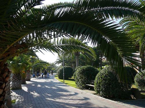 Vacanze in Abruzzo - Tortoreto Lido